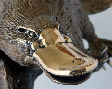 PLATYPUS AND FROG P14H – WILDLIFE SCULPTURE IN BRONZE BY