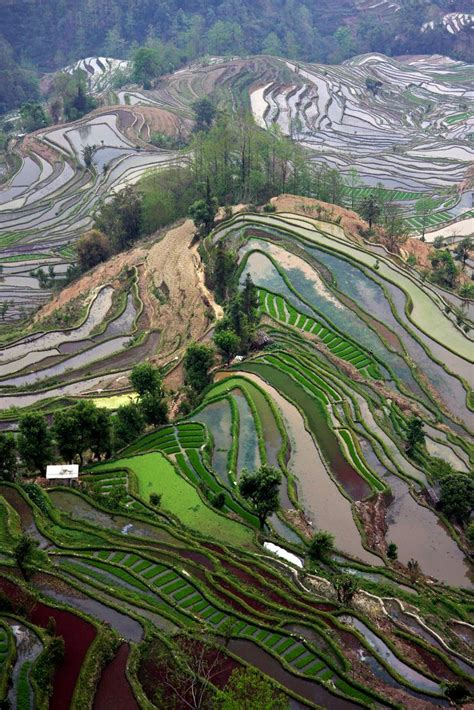 Top 20 Reasons To Visit China - Travels And Living