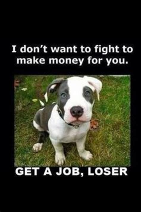 From Pitbull Quotes