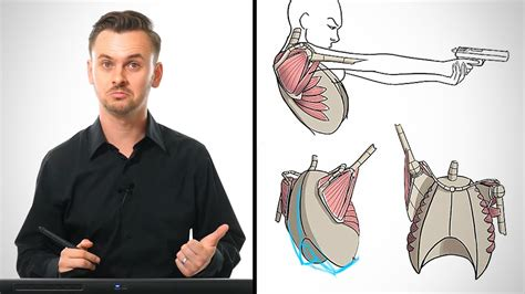 Anatomy Drawing Critiques - The Shoulders - YouTube