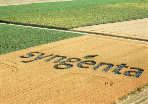 Swiss agrochemical giant Syngenta to become Chinese after