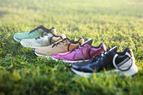 The recyclable sneaker